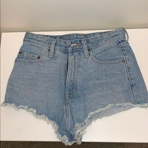 Urban Outfitter BDG Denim Shorts